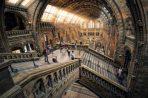 Visitas guiadas a Museos diciembre y enero